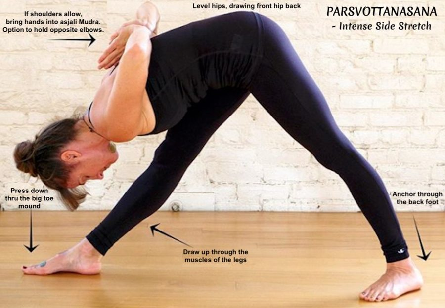 Xxl making ashtanga primary accessible